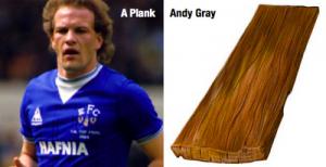 Gray-Plank